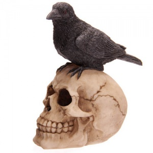 Decorative Skull with Raven