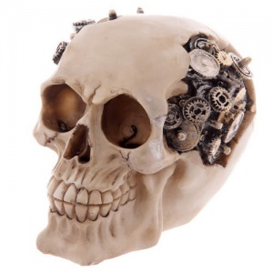 Skull Decoration with Exposed Cogs and Gears